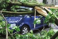 Schwere Unwetterkatastrophe in NRW – Rettet die Umwelt vor der Profitwirtschaft!